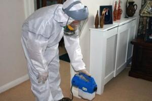 служба уничтожения запахов