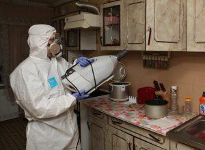 Уничтожение тараканов в СПб с гарантией