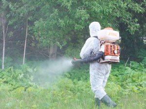 распыление гербицидов на участке